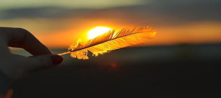 sun_feather_image